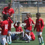 43 Troofeo Prebenjamines 9 de junio (12)